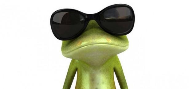 rana con gafas